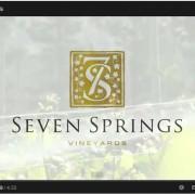 Seven Springs Video